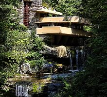 Falling Water by Frank Lloyd Wright by vigor