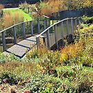 Bridge though the Garden by Monnie Ryan