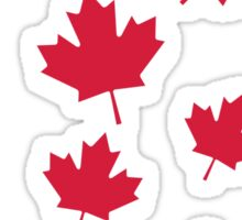 Canada maple leafs Sticker
