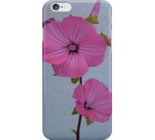 Felicity iPhone Case iPhone Case/Skin