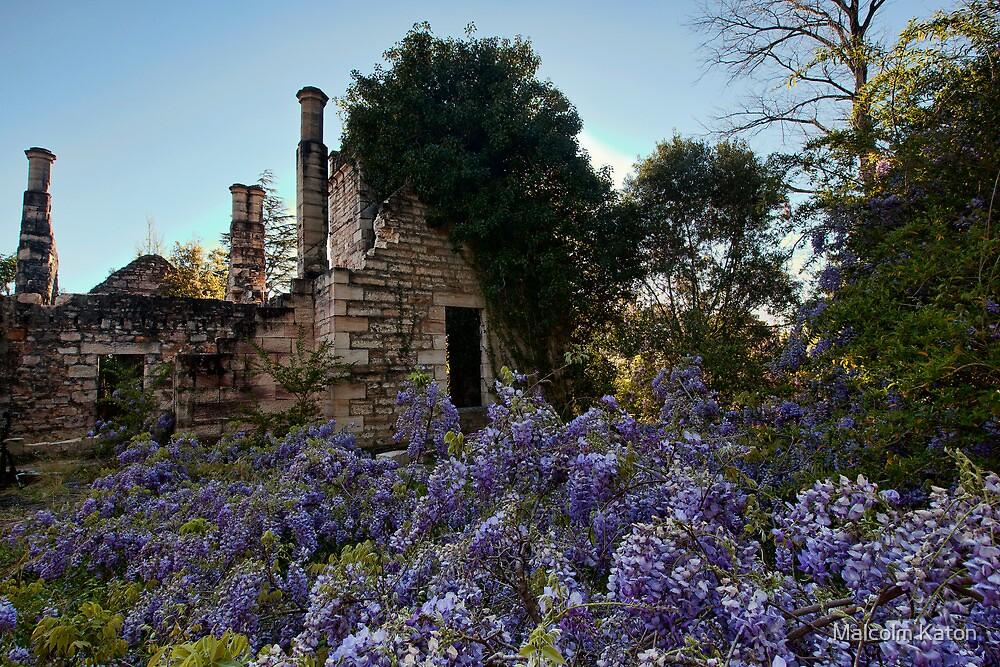 Eurama Ruins - Faulconbridge NSW by Malcolm Katon