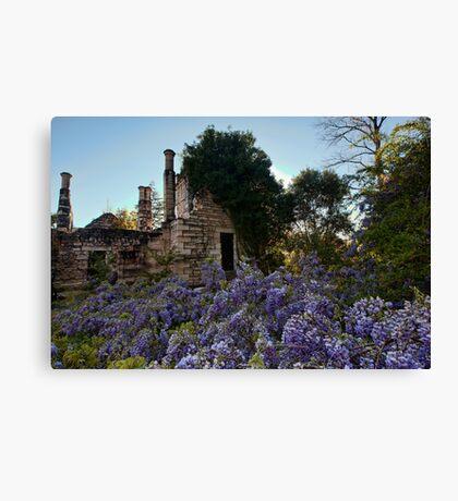 Eurama Ruins - Faulconbridge NSW Canvas Print