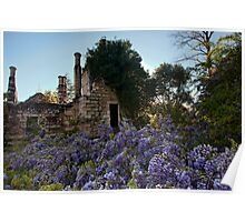 Eurama Ruins - Faulconbridge NSW Poster