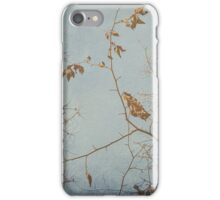 Paint With All The Colours Of The Wind iPhone Case/Skin