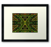 Valley of the Queens Framed Print