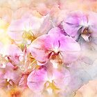 Dreaming of Orchids by MotherNature2