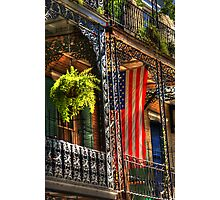 Ferns and Flags Photographic Print