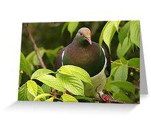 I've just got a job at the 'Bird Inn' as a bouncer.......! Greeting Card