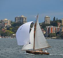 Gaff-rigged sailboat, Sydney Harbour, Australia by Paul Watson