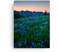 Tatoosh Sunrise Canvas Print