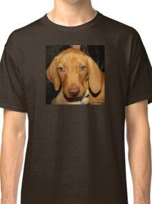 Adorable Vizsla Puppy Classic T-Shirt