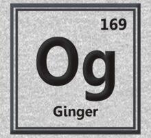 Original Ginger (Element) by Borisr55