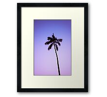 palm tree ver.violet Framed Print