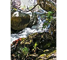 Waterfall & Rocks  Photographic Print