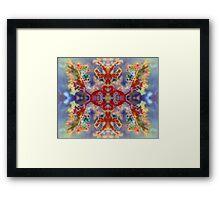 Rainbow Snowflake (Plume Agate) Framed Print