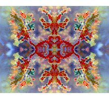 Rainbow Snowflake (Plume Agate) Photographic Print