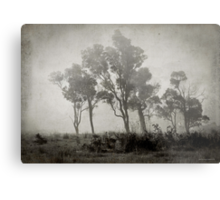 Misty Field Metal Print