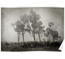 Misty Field Poster