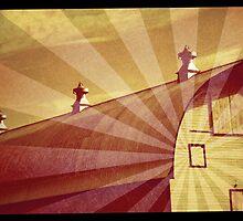 barn : rays by ltdRUN
