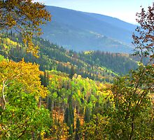 Colorful Colorado by Brian Harig