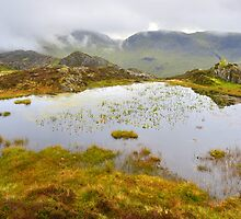 The Lake District: The Tarns on Haystacks by Rob Parsons