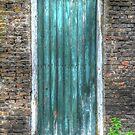 The door by Peter Wiggerman