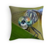 Face Of The Dragonfly Throw Pillow