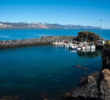 Arnarstapi, fishing village by JorunnSjofn Gudlaugsdottir