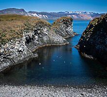 Arnarstapi fishing village by JorunnSjofn Gudlaugsdottir