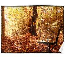 A Forest Bench in a Fall Scene Poster