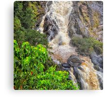 Beautiful tropical waterfall Metal Print