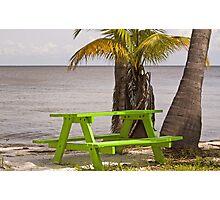 Tropical Oasis  Photographic Print