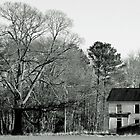 Farm House and Tree by Dennis Maida