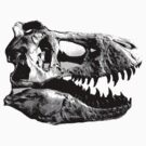 T-Rex Halfdot Skull by mertalou