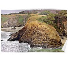 Headlands of the Jughandle State Reserve Poster