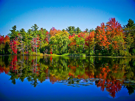 Peak Fall Colors Reflected on a Blue Lake by Chantal PhotoPix