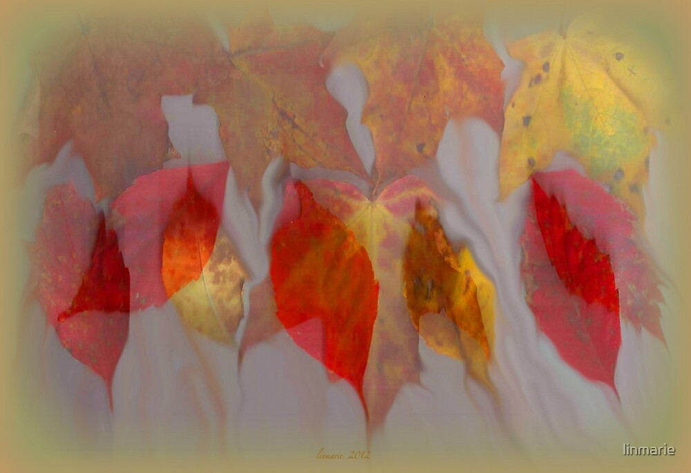 leaflets bleeding... by linmarie