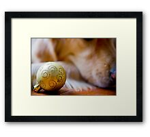 Furry Christmas and a Pawsome New Year Framed Print