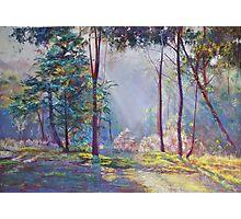 Symphony of Bush Colours 2 Photographic Print