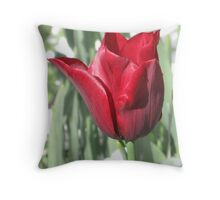 Butchart Gardens - Red Tulips  Throw Pillow