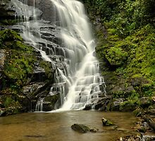 Eastatoe Falls  by Laura  Knight