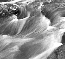 Water Haircurls by Adam Bykowski