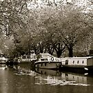 come barging with me by kchamula