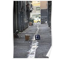 Melbourne alleys and their occupants Poster