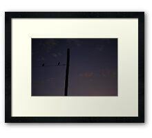 Magpies - Quiet Night Framed Print