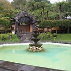 Bali Gardens by cactus82
