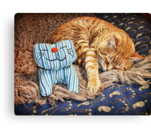 Cat Naps Canvas Print