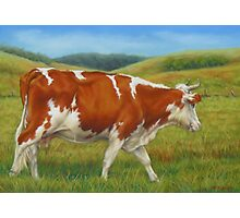 On The Moove Photographic Print