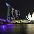 Singapore by night 2 by Adri  Padmos