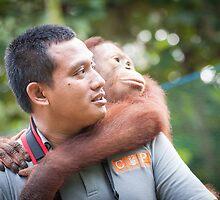 Hardi & Hercules by Orangutans